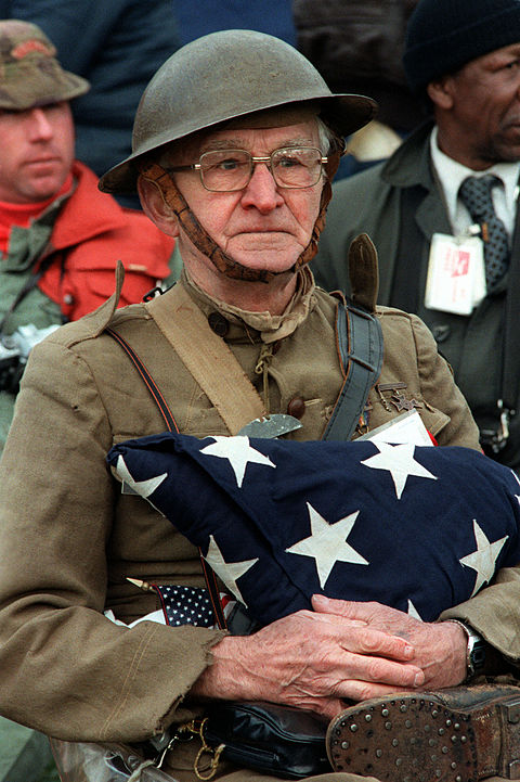 480px-Veterans_day